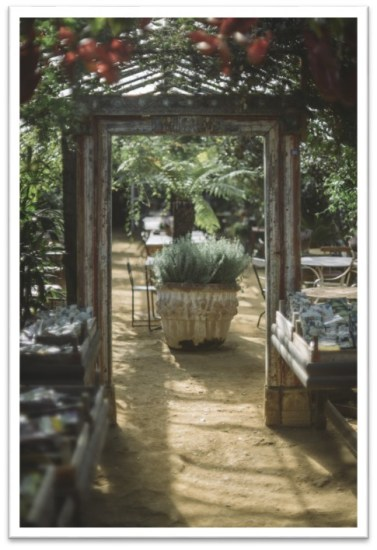 picture-16-petersham-nurseries