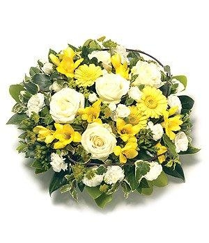 Yellow Posy Buy Online Or Call 01375 859780