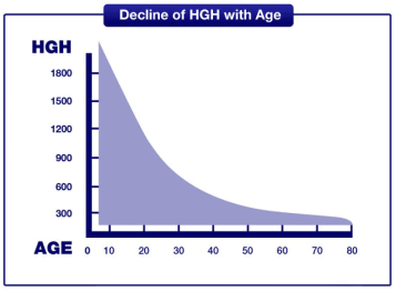 The Human Body's Production of Human Growth Hormone Over Time