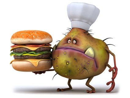 Gut bacteria influences dietary choices