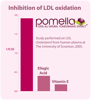 Pomella extract can inhibit LDL oxidation