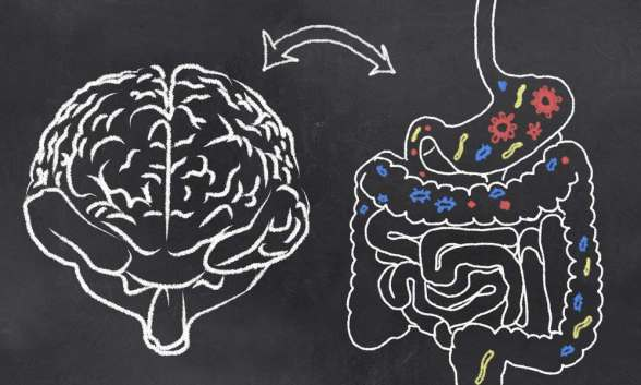 zap your brain for benefical bacteria