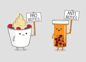 Always take probiotics if you must take antibiotics
