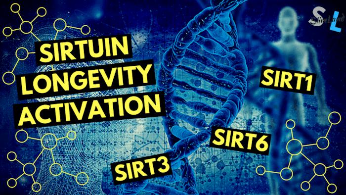 Dr David Sinclair And Rhonda Patrick How Nad And Trans Resveratrol Activate Your Longevity Genes Garma On Health