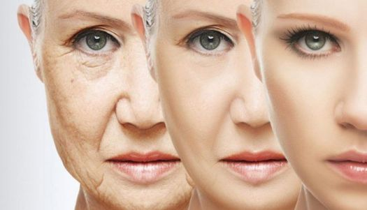 Your anti-aging lifestyle: questions and answers