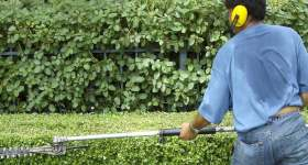 Landscape Maintenance Vero Beach