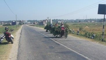 The only other traffic on the roads this day was cows and bicycles