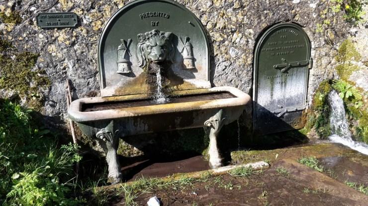 Selborne water supply