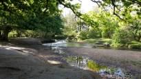 Lymington river New Forest