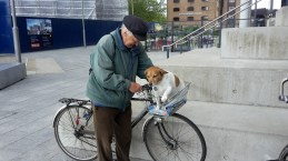 Man with his dog on a bike