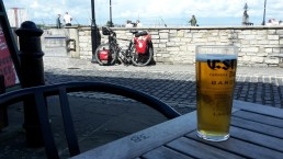 Pint of lager