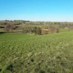 Fields and blue sky