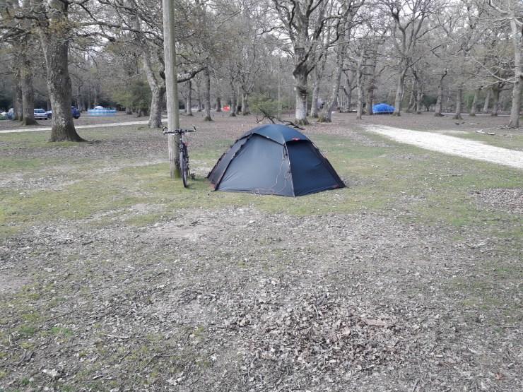 Trees tent