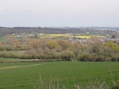 Fields and grass
