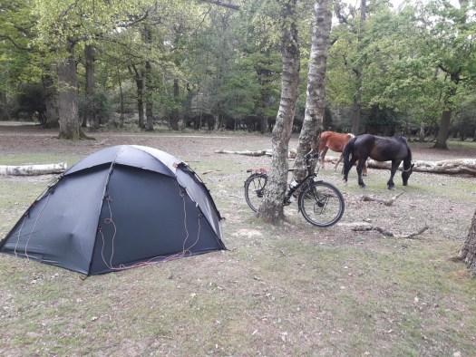 Tent bike trees ponies