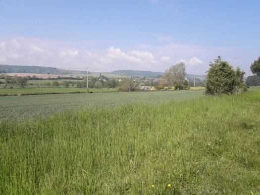 Grass, hills, sky