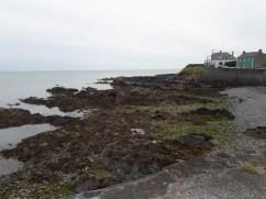 Along the coast towards Dublin