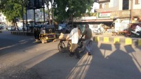 Pushing a cart along the street in Dhule