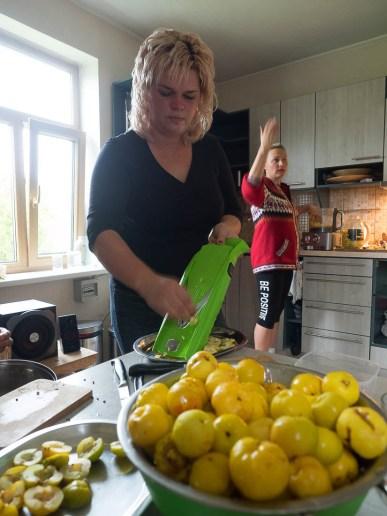 Cidoniju-ābolu-talka_VO_140020