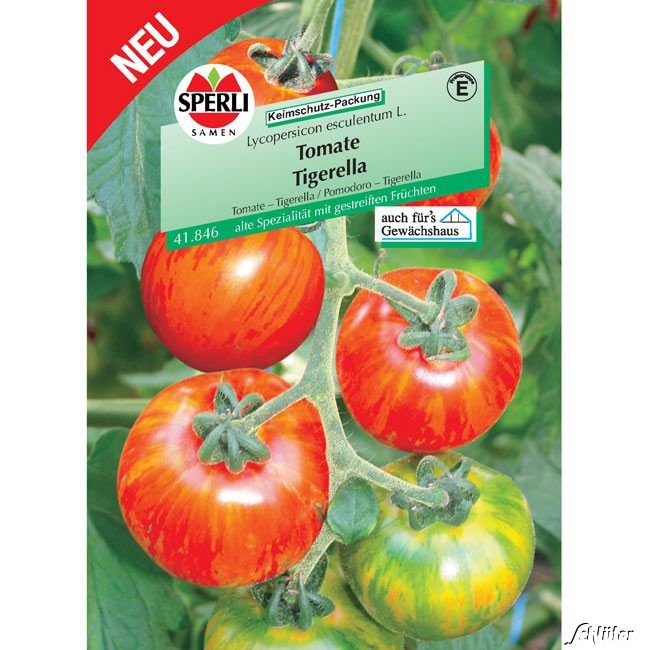 Tomate Sperlings 'Tigerella'