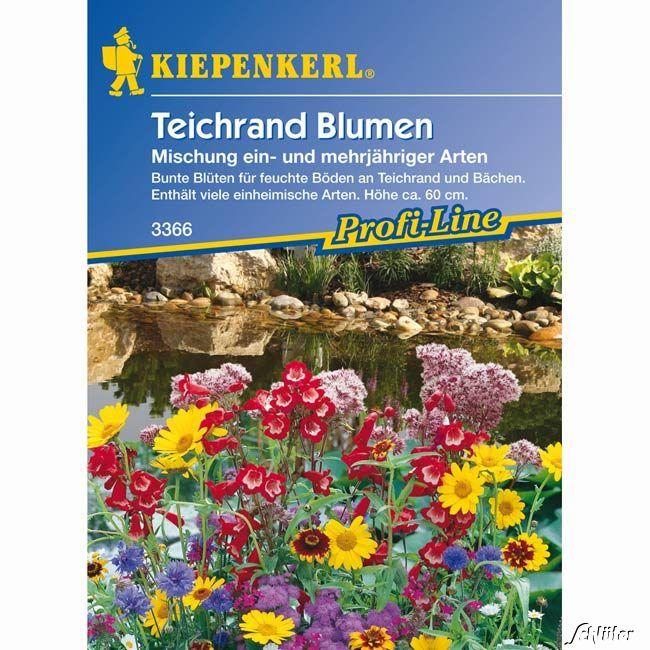 Teichrand-Blumenmischung