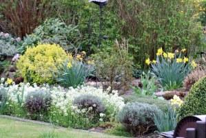Naturgarten anlegen   Pflanzen und Gestaltung ...