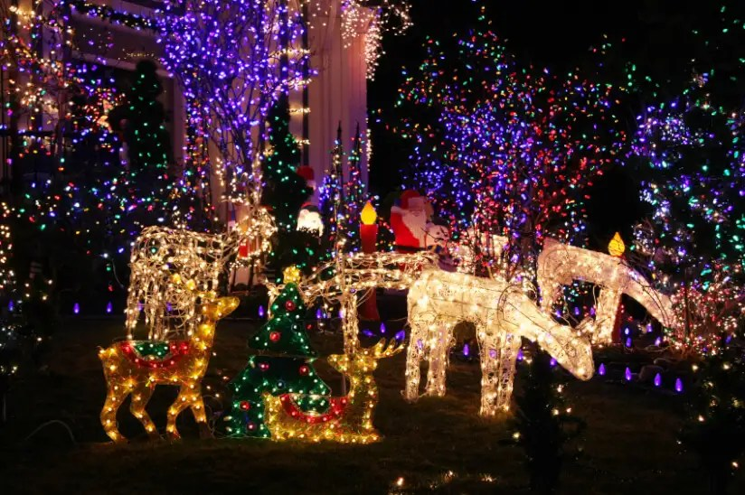 Christmas Light Display Edmonton