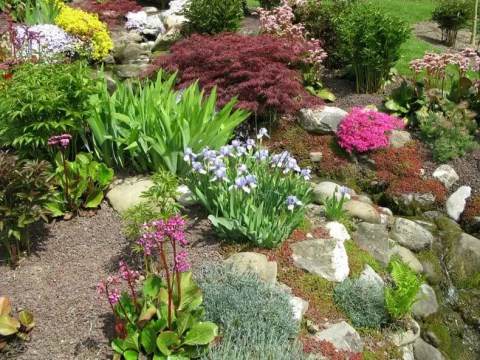 garten terrassenförmig anlegen steingarten anlegen: eine schritt-für-schritt-anleitung