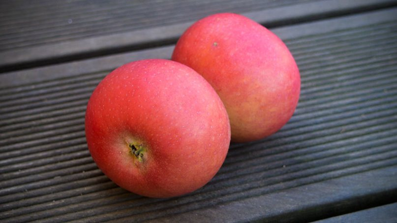 Burgenländischer-Doppel-Apfel
