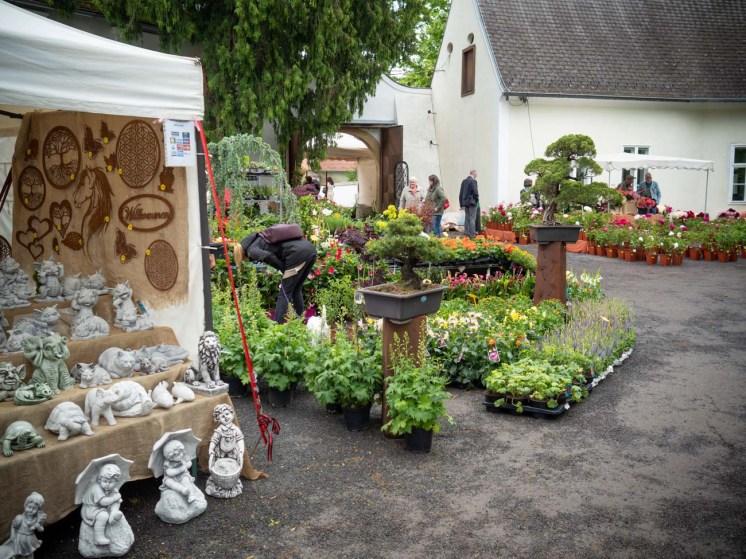 Gartenlust-Lackenbach-2020-p6050047