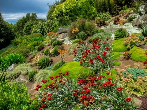 gartengestaltung böschung böschung bepflanzen » so befestigen sie ihren hang mit