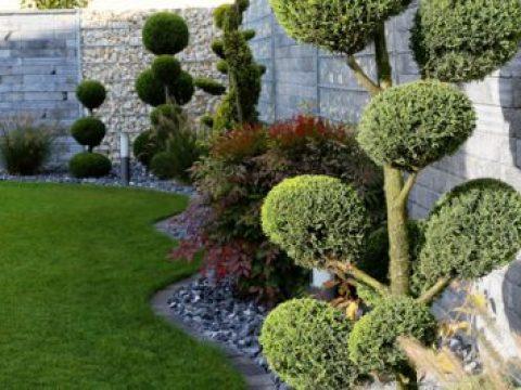 gartengestaltung mit buchs buchsbaum im garten » so setzen sie ihn kreativ ein