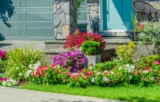 Vorgarten gestalten » Schöne Idee und Pflanztipps