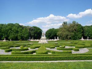 Buxbaum Schlossgarten mit Buchsbaum