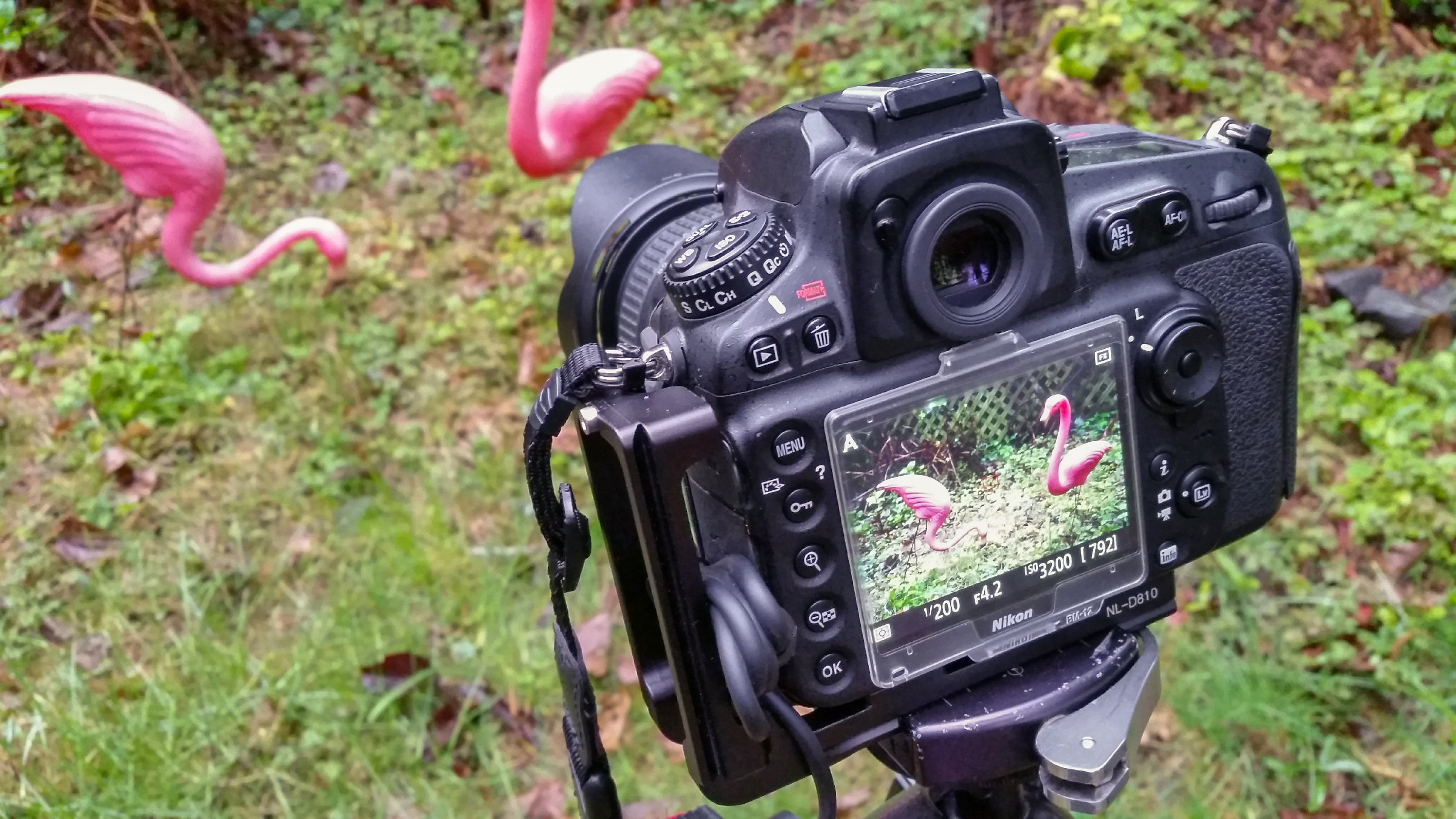 What to Look For In A Camera For Any Skill Level