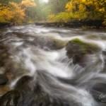 Still Creek Oregon