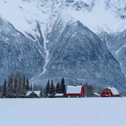 Alaska Colonial Farm