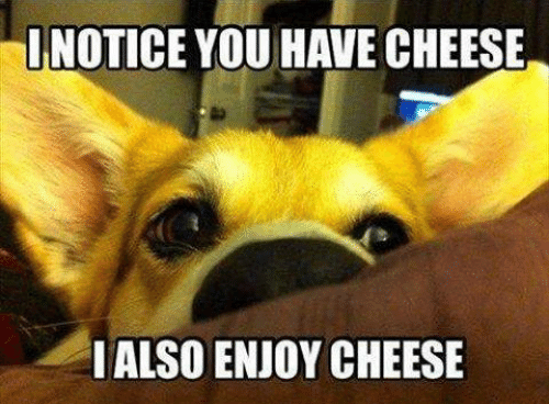 i notice you have cheese. Being creative.