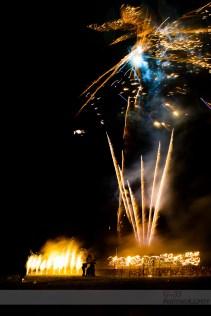 Firework Fire dragon!