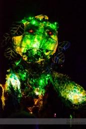 Imbolc Festival 2014 - Greenman