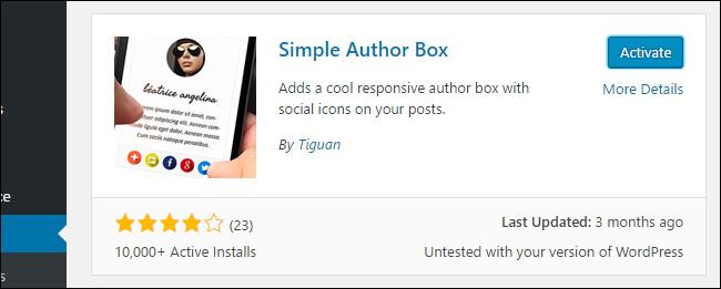 Activate Simple Author Box