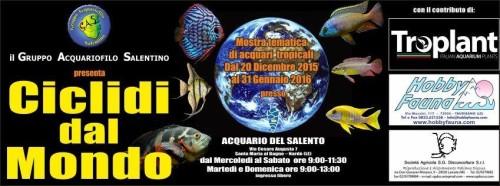 Mostra tematica CICLIDI DAL MONDO – Acquario del Salento