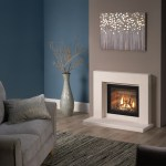 Catarina with DL700 gas fire