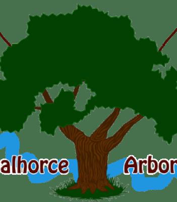 Gincana Guadalhorce Arboretum