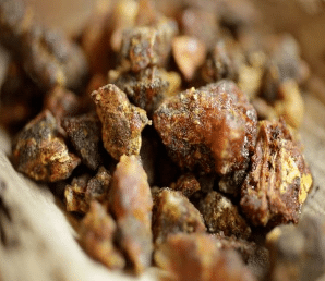 Gomme-résine opoponax