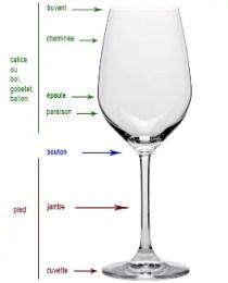 Anatomie d'un verre