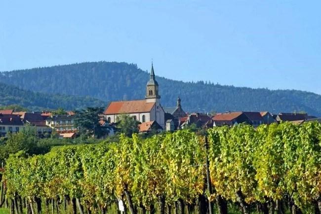 Vignoble et village de Heiligenstein