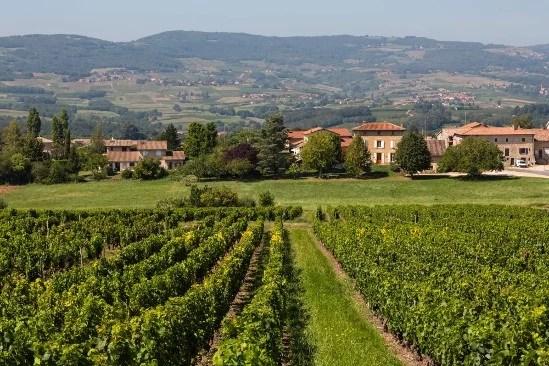 Vignoble de Villefranche–sur-Saône