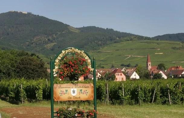 Vignoble et village de Wettolsheim