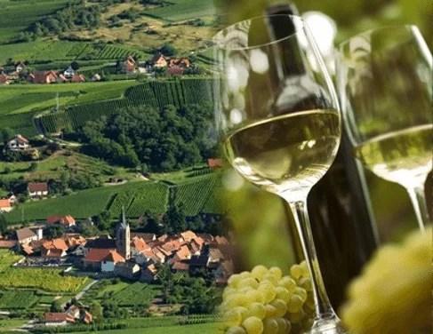 Vin et village de Gewurztraminer